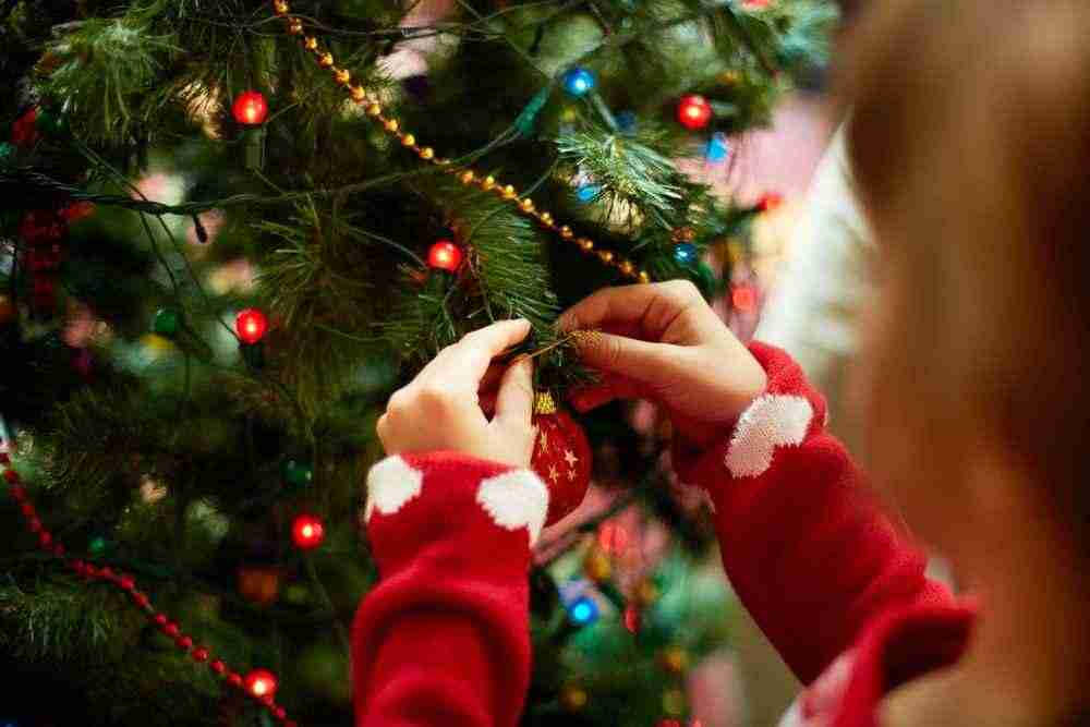 Живая елка – настоящий праздник.