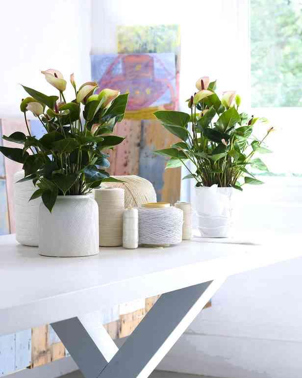 7 дешёвых украшений, которые сильно преобразят вашу квартиру