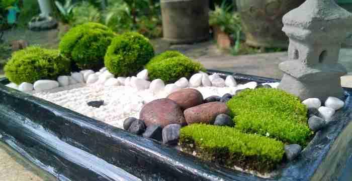 Японский сад на своем участке: советы и рекомендации