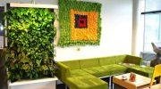 Украшаем стены зеленью, варианты и нюансы монтажа