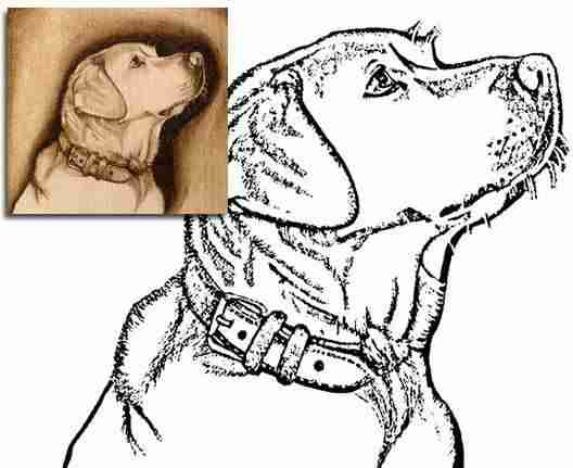 Собака - рисунки выжигания на фанере