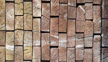 Дерево как материал для строительства